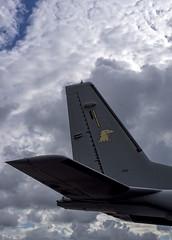 Head & Tail (50v) Tags: plane finland casa airport helsinki force head aircraft air tail transport finnish section airfield malmi eads helsinkimalmi c295m