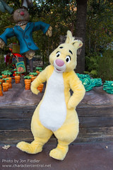 Rabbit (Random)