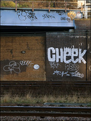 Cheek, 10Foot and others... (Alex Ellison) Tags: urban graffiti cheek boobs railway line roller graff throwup trackside northlondon throwie 10foot
