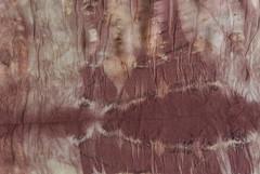 Pattern (detail 1) (jonnydredge) Tags: london rose botanical rust berries natural eucalyptus dying eco shibori summerfruits