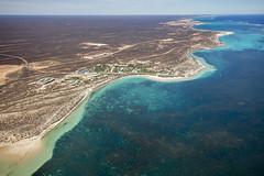 WA Coral Bay - 4658