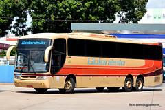 140003-8 (American Bus Pics) Tags: goinia goiansia
