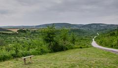 Ds (Dejan Stefanovic) Tags: road nature grass serbia gora vojvodina fruskagora