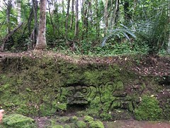 2014-03-13 15.26.49 (amaralisgroup) Tags: ocean sea bali mountain tree nature rock palms indonesia mushrooms island asia rice magic jungle ricefields supernatural hallucinations