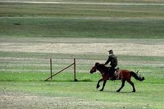 Rider (MelindaChan ^..^) Tags: xingjiang china  r rider horse sheperd chanmelmel mel melinda melindachan chinese prairie grassland ilikazakhautonomousprefecture