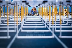 Trofeu Brasil de Atletismo 02jul2016-37.jpg (plopesfoto) Tags: salto esporte martelo gp atletismo atleta vara sobernardodocampo olimpiada medalha competio barreiras arremesso esportista 800metros 100metros cbat arenacaixa