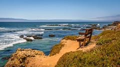 Serenity around turbulent tides. (arssantosh) Tags: ca1 pacificcoast highway1 wideangle nikon d3300 pescadero sfbayarea pacificocean