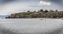 Mersey Bluff Devonport, from Coles Beach Rd. (paulledger81) Tags: mersey bluff tasmania devonport australia lighthouse landscape seascape