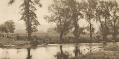 In Memory of Nori (Nora Mszly) (sctatepdx) Tags: vintagephoto trees river serene serenity inmemory memorial loss sadness tualatinriver oregon 1911