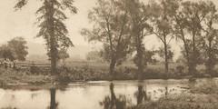 In Memory of Nori (Nora Mészöly) (sctatepdx) Tags: vintagephoto trees river serene serenity inmemory memorial loss sadness tualatinriver oregon 1911