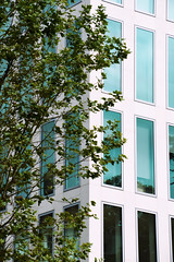 Hidden (Marta Marcato) Tags: build building tree trees contrast contrasto edificio uffici albero foglie leaves london londra nikond7200