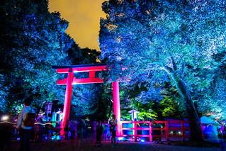 when the night comes (Shimogamo shrine, Kyoto)