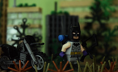 Batman: Zero Year (Andrew Cookston) Tags: lego dc comics batman thebatman zeroyear dirt bike gotham city scottsnyder dannymiki moc photoshop custom minifig stilllife toy nikon macro photography andrewcookston