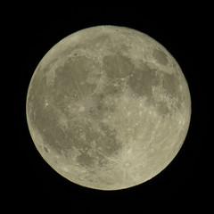 shine on, harvest moon (mimbrava) Tags: harvestmoon fullmoon moon background arr allrightsreserved mimeisenberg mimbrava mimbravastudio