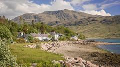 JHF0003992 (janhuesing.com) Tags: rot inverie scotland wildlife hiking highlands mallaig knoydart landscape nature outdoor