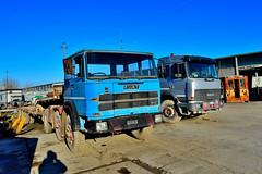 fiat 180NT6x2 (riccardo nassisi) Tags: truck camion abbandonato abandoned rust rusty relitto rottame ruggine ruins scrap scrapyard epave cava piacenza san nicol