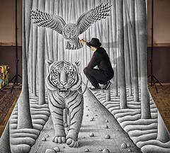 Pencil Vs Camera 74 - Making 3 (Ben Heine) Tags: makingof pencilvscamera art 3d benheine drawing dessin studio tiger anamorphosis anamorphose illusion animal sketch giant benheineart tigre owl chouette