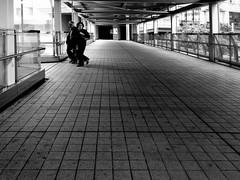 Monochrome Photography Monochrome Blackandwhite Black And White Black & White Blackandwhite Photography Black And White Photography Black&white Light And Shadow Shadows & Lights Symmetry Minimalism Fine Art Photography Fine Art Art Architecture Architectu (neijin0218) Tags: monochromephotography monochrome blackandwhite blackwhite blackandwhitephotography lightandshadow shadowslights symmetry minimalism fineartphotography fineart art architecture architecturecollection architecturaldetail architecturebw lifestyles love love streetart street streetphotography