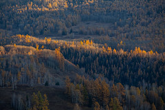 2014 China Xinjiang (jackcao77216) Tags: china sunset sunrise canon river village xinjiang karst landform forestwoods