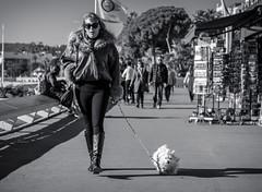 So Cannes #7 (_Franck Michel_) Tags: shadow bw woman dog chien pet sun white black sunshine fashion glasses nw riviera noir ombre blanc croisette