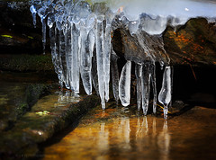 Nectar Falls - 8878 (J & W Photography) Tags: trees rock creek stream alabama waterfalls cascades icicle nectar 2015 nectarfalls jwphotography