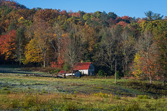 Barn (Brian Hammonds) Tags: park camera trip travel autumn mountain holiday mountains color detail fall nature beautiful beauty leaves contrast outside outdoors photography photo nikon photographer natural bright image hiking tennessee exploring sightseeing picture places tourist east full adventure explore photographs national photograph journey frame cherokee traveling smoky dslr capture fx eastern mountians d800 traveler