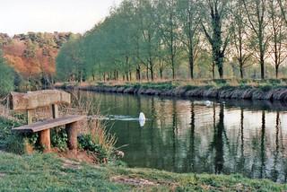 River Avon New Forest