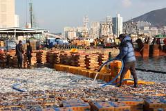 Docks at Jagalchi fish market in Busan (mbphillips) Tags: korea 한국 韓國 busan 부산 釜山 fishmarket jagalchi 자갈치 fareast asia アジア 아시아 亚洲 亞洲 mbphillips canon450d canonef40mmf28stm