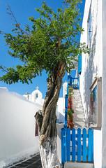 Mykonos Mount [explored] (Darren Berg) Tags: blue stairs explore greece mykonos explored