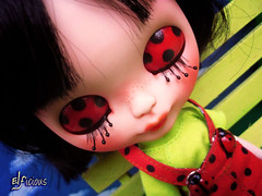 Miss Ladybug brings you luck for 2015