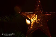 Christmas mood (lg-photographic) Tags: christmas weihnachten mood benjamin stimmung jaworskyj