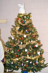 2014-12-19 (61) kids at Christmas (JLeeFleenor) Tags: photos photography holiday celebration mountzionunitedmethodist lothian md christmas nativity christmastree methodist maryland