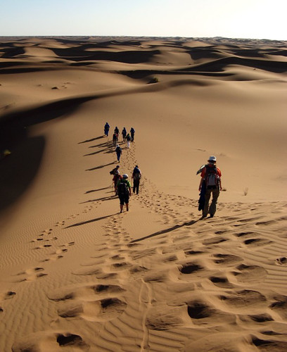 Es geht in die Wüste