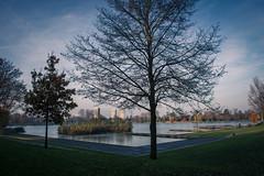 's-Hertogenbosch: IJzeren Vrouw (Ingeborg Ruyken) Tags: autumn tree downtown nederland thenetherlands sunny boom flats citycenter denbosch centrum citycentre ochtend shertogenbosch amazone zonnig binnenstad ijzerenvrouw hersft prinshendrikpark catmyhometown