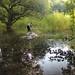"""Wetlands Sampling for SUMERNET • <a style=""""font-size:0.8em;"""" href=""""https://www.flickr.com/photos/26561722@N06/16134401079/"""" target=""""_blank"""">View on Flickr</a>"""