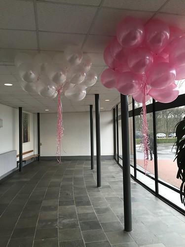 Heliumballonnen Roze en Wit Zuider Begraafplaats Rotterdam