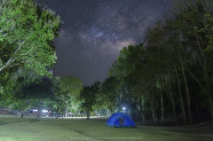 The milky way (Pond Pisut) Tags: park longexposure tree nature way landscape nationalpark natural tent national treeline milky the naturelover naturescape landscapelover