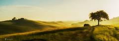 Tuscan Light II (larsvandegoor.com) Tags: italy landscape hills tuscany
