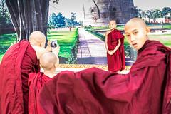 Triple Photo-DSC_7853-3 (thomschphotography3) Tags: red portrait yangon burma streetphotography buddhism monks myanmar birma shwedagonpagoda novices rangun