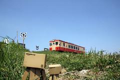 Isumi rail / Canon EOS60D:SIGMA 17-50mm F2.8 EX DC OS HSM (telenity) Tags: danboard  train
