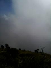 "Pengembaraan Sakuntala ank 26 Merbabu & Merapi 2014 • <a style=""font-size:0.8em;"" href=""http://www.flickr.com/photos/24767572@N00/26557035684/"" target=""_blank"">View on Flickr</a>"
