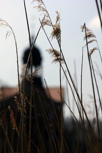 """Auf der Landesgartenschau (16) • <a style=""""font-size:0.8em;"""" href=""""http://www.flickr.com/photos/69570948@N04/26835399125/"""" target=""""_blank"""">View on Flickr</a>"""