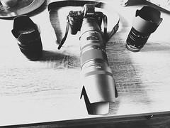New Lens Sigma 70-200mm f2.8 APO DG MSH (wildbam25) Tags: new lens 50mm sony sigma gear apo equipment makro speedmaster 70200 f28 f95 dg msh iphone zhongyi linse objektiv 2870 a7ii 6s 42mm objektive mitakon sonygear fe2870