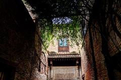 patio de La Alhambra (Carlos M. M.) Tags: andaluca granada hdr jardn laalhambra canon100d