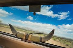 WRAParizona.com_DSC3061 (WRAP Photography) Tags: arizona tourism us tour unitedstates sony wrap tourist segway tours zeis fortmcdowell a99 a6000 wraparizonacom wraparizona wwwwraparizonacom