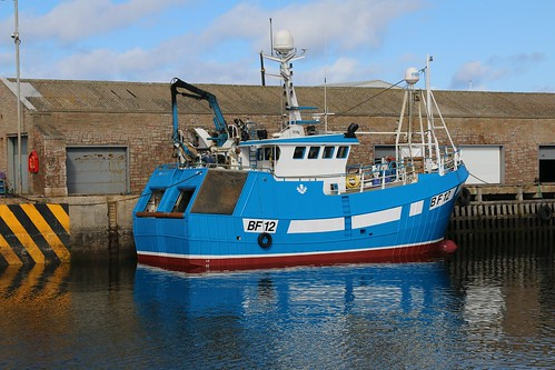 22nd April 2016. Sunday Best on a Friday. Ellorah BF12 in Macduff Harbour, Banffshire, Scotland