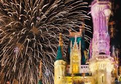 Light Over The Castle (The Mr and The Mrs) Tags: castle nikon glow fireworks painted disney disneyworld wishes impression magickingdom topazlabs disneyparks waltdisneyword fireworksfriday kristicreed wwwthemrandthemrscom