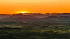 Dawn's Early Light (carolina_sky) Tags: orange green sunrise washington state wheat hills farms rolling grasslands colfax palouse steptoebutte pixelshift pentaxk1 pentax150450mm