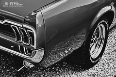 Shiny Pony (Hi-Fi Fotos) Tags: bw ford vintage mono nikon classiccar noir tail rear pony chrome american mustang blackandwhtie d5000 hallewell hififotos