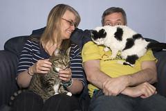 52 Week Challenge - Week 28 (Richard Amor Allan) Tags: family couple cats felines moggies moggy tabby smile sitting dogwood52